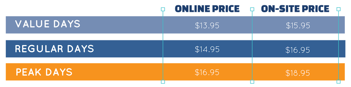 Copy of Dynamic Pricing Structure Graphic